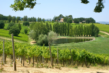 Sagrantino di Montefalco, revaluate tradition through an innovative approach