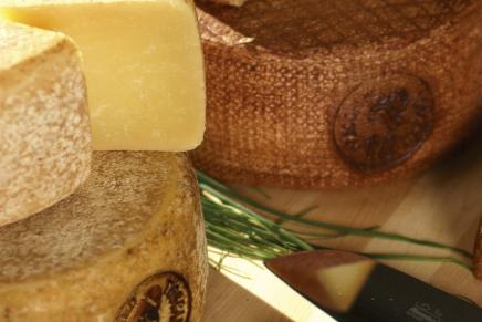 The three Italian Pecorino cheeses at the Winter Fancy Food Show