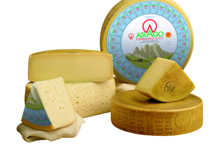 The network for Asiago lovers