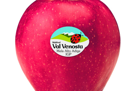 A winter warmed by the red fire of Red Delicious Val Venosta apple