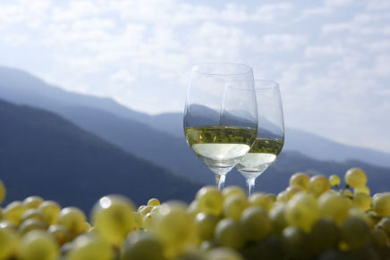 Alto Adige/Südtirol, the land of unlimited wine possibilities