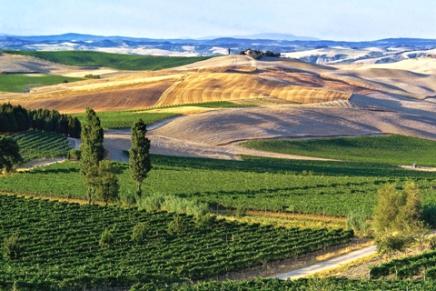 The gift of Montalcino's land