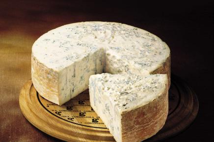 Gorgonzola 'cheese'