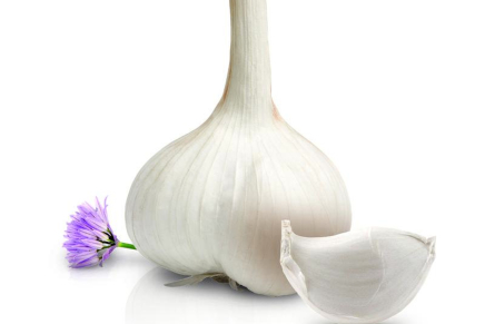 The Voghiera Garlic, mild by nature