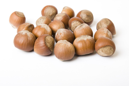 Hazelnut from Piedmont