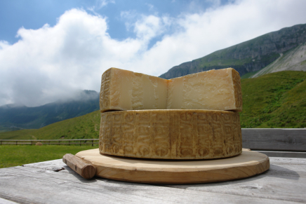 Piave Cheese, a very strong tie with its land
