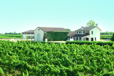 Azienda Agricola Pradio, tradition and experience