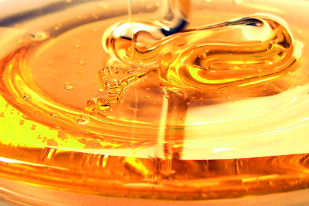 Miele della Lunigiana, the 'perfect' honey