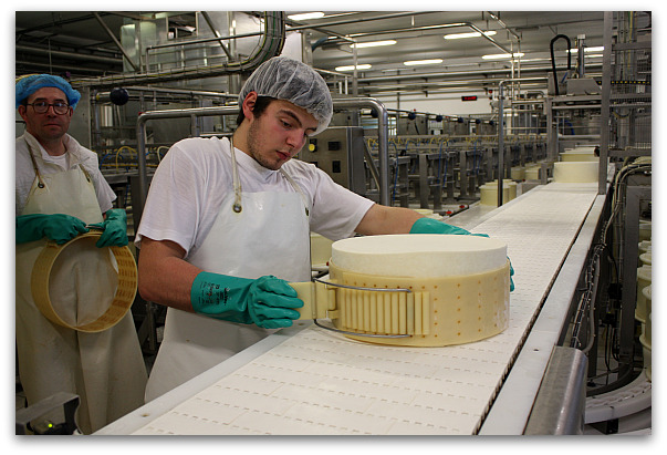 Asiago-Cheese-Factory-3
