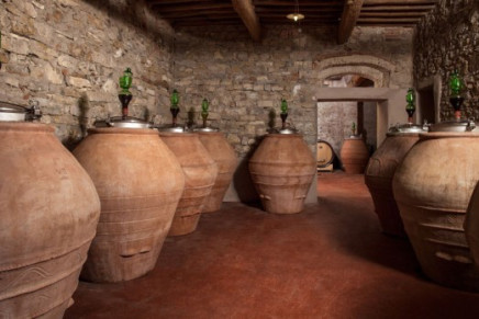 From Emilia-Romagna autochthonous vines vinified in Georgian amphorae