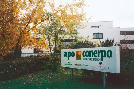 Apo Conerpo keeps its turnover of fresh products