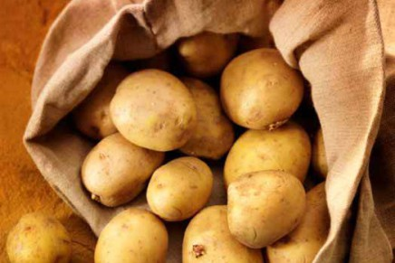Places of excellence for potatoes in Italy