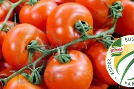 Consorzio Interregionale Ortofrutticoli participates in the Knorr Partnership Fund