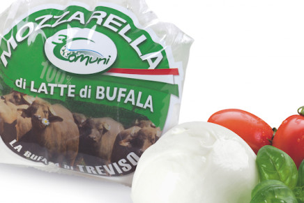 The unexpected Made in Italy: Mozzarella di bufala from Treviso