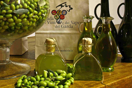 Garda tells about the extreme olive oil from the shores of alpine lakes