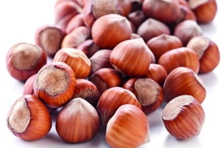 Hazelnuts are precious, but they are never enough