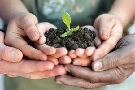 Italian Social farming can expand in Europe