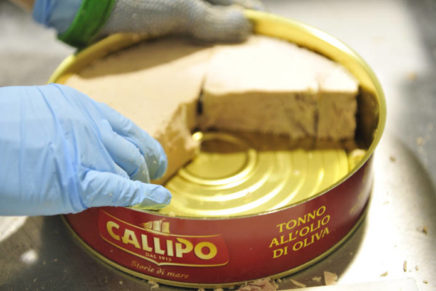 Callipo, an experience that comes from the sea