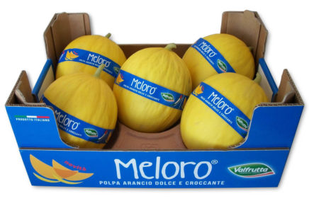Valfrutta presents Meloro