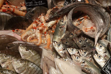 Sustainable raw fish: the new offer by Eataly Roma