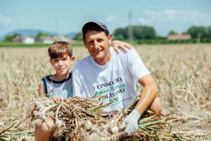 Polesano white garlic PDO to conquer the UAE